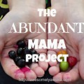 The+Abundant+Mama+Project