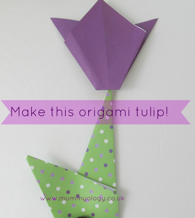 I Saw These Beautiful Origami Tulips On Education A While Back And They Are So Pretty Easy To Do That Want Show You Here How Make Them With